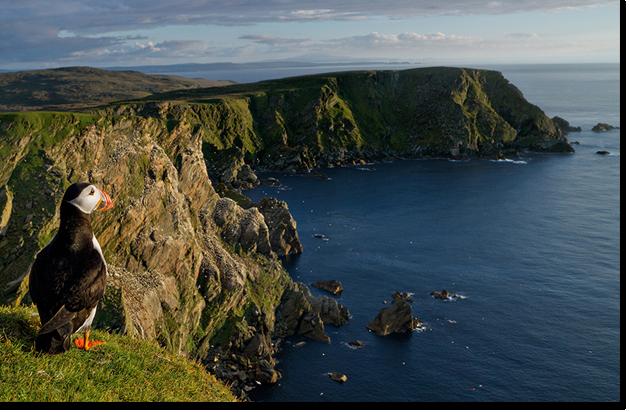 MZ5A & MZ5B - Shetland Islands, Scotland