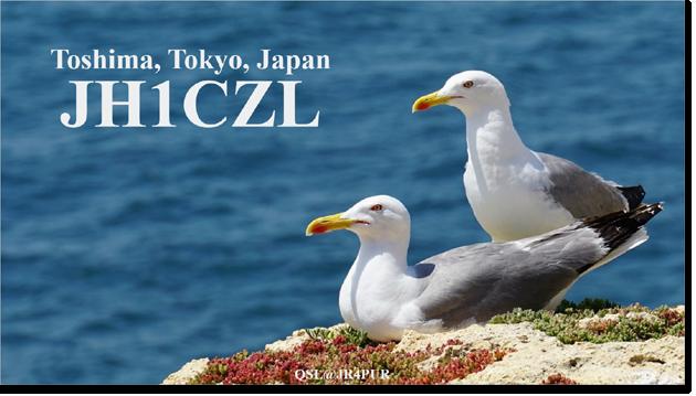 QSL@JR4PUR #093 - Common Gull