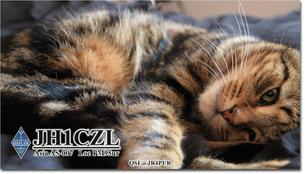 QSL@JR4PUR #245 - Day Dreaming