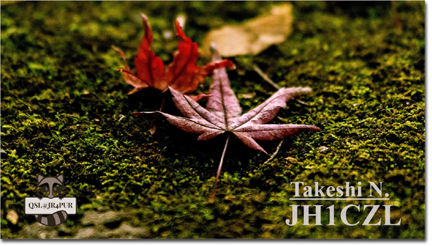 QSL@JR4PUR #264 - The Fallen Leaves
