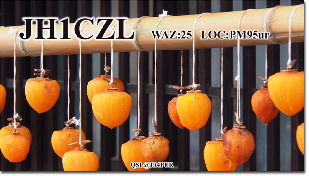 QSL@JR4PUR #277 - Dried Persimmon