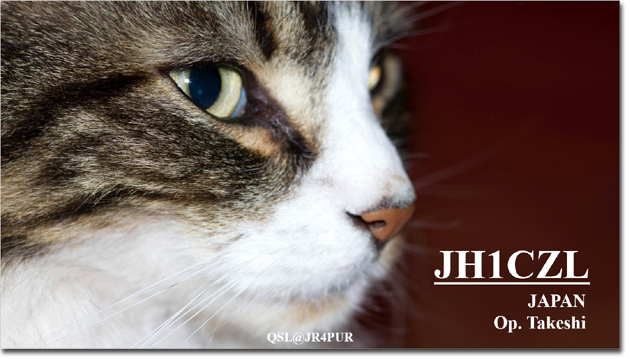 QSL@JR4PUR #361 - Handsome Cat